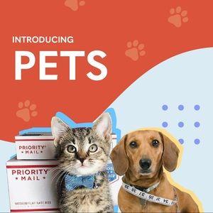 Introducing Pets!